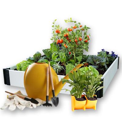 Urban Gardening & Pest Control
