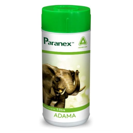 Paranex