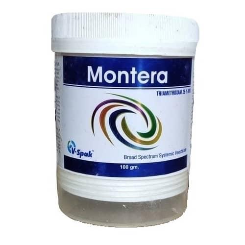Montera
