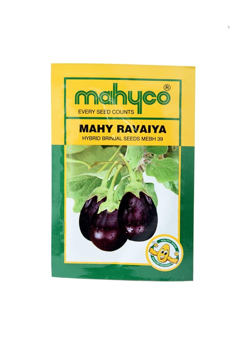 Mahy Ravaiya