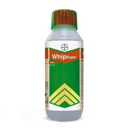 WhipSuper