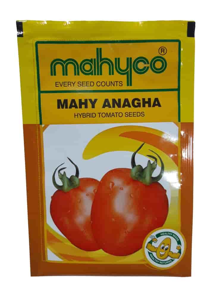 Mahy Anagha