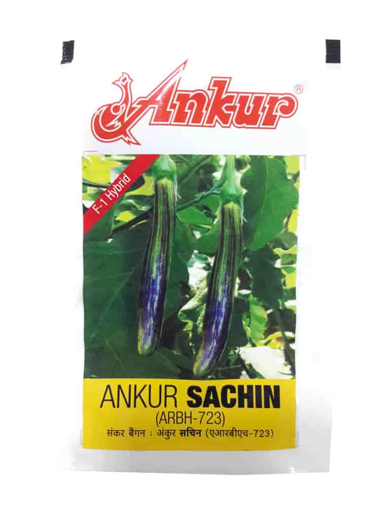 Hybrid Sachin