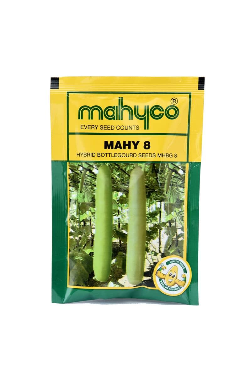 Mahy 8