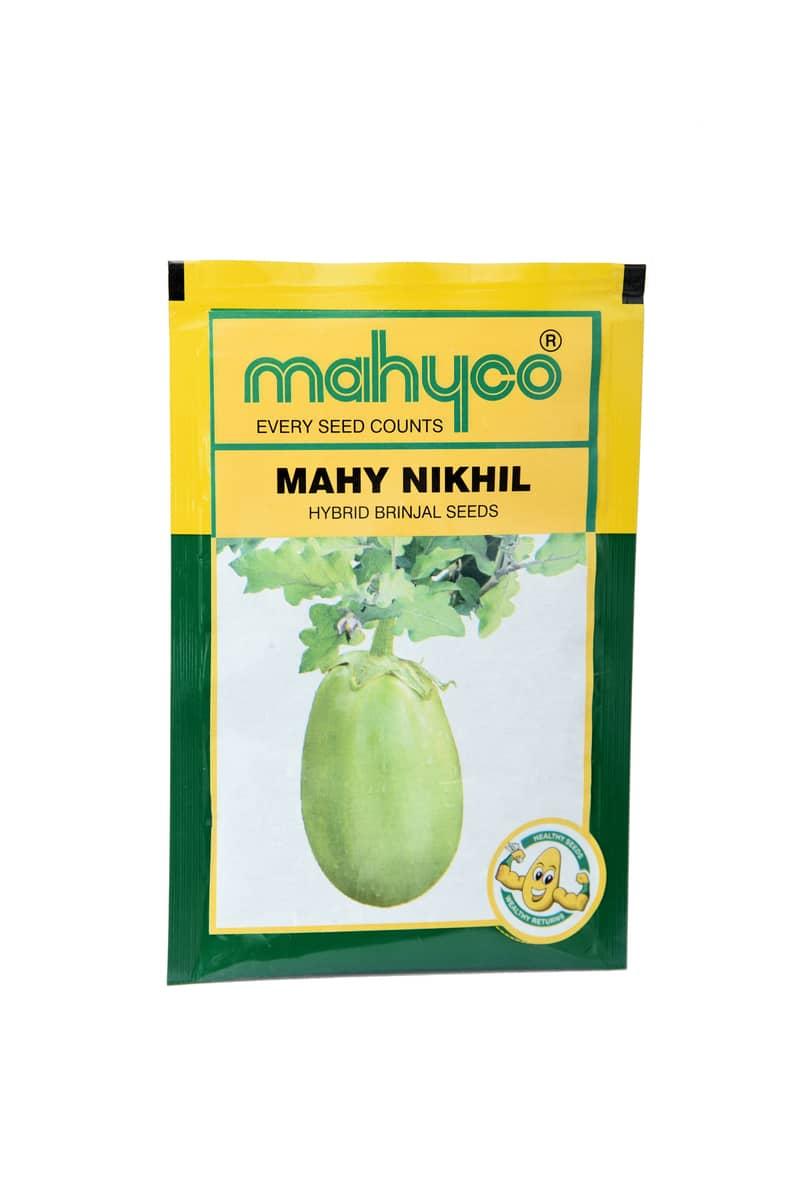 Mahy Nikhil