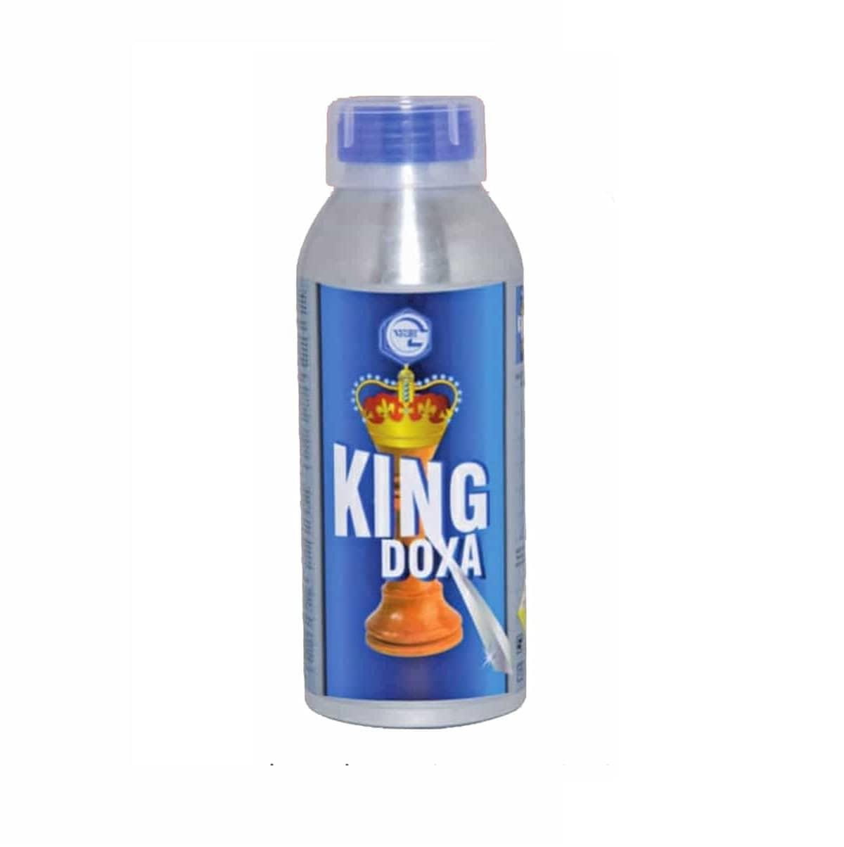 Kingdoxa